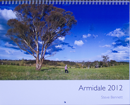Armidale country side past huge tree on calendar cover